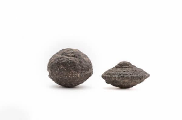 Two Moqui Marbles
