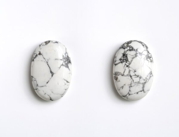 Two piece of Howlite